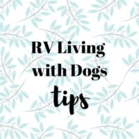 RV Living with Dogs